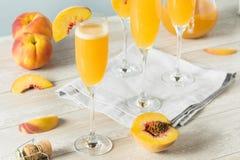 Süße sprudelnde Pfirsich Bellini-Mimose Stockbilder