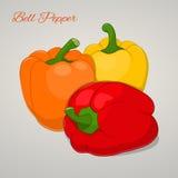 Süße Tomaten der Karikatur lokalisiert auf grauem Hintergrund, Vektorillustration Früchte Stockfotografie
