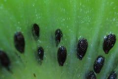 Süße tropische Frucht Stockfotografie