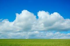 Süße Wolken Lizenzfreie Stockfotos