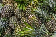 Süßer Ananas-Stapel Lizenzfreie Stockbilder