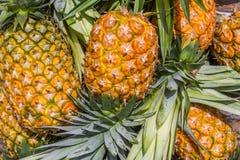 Süßer Ananas-Stapel Stockfoto
