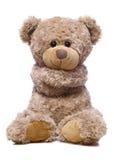Süßer Bär getrennt auf Weiß lizenzfreie stockbilder