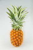 Süßer Geschmack der Ananas auf weißem Hintergrund Stockfoto