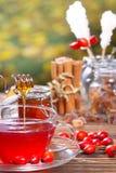 Süßer Hagebuttetee mit Honig lizenzfreie stockfotografie