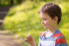 Süßer kleiner Junge, der ein Gänseblümchen hält Lizenzfreie Stockfotografie