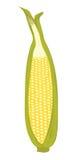 Süßer Mais Stockfotografie