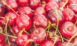 Süßer roter Kirschhintergrund Lizenzfreies Stockbild