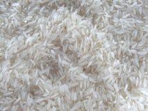 Süßer weißer thailändischer Reis lizenzfreie stockbilder