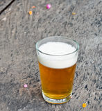 Süßes Bier Stockfoto