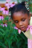 Süßes Mädchen stockbilder