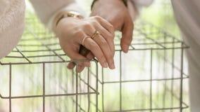 Süßes Paarhändchenhalten Lizenzfreie Stockbilder