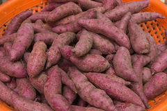 Süßes poteto Stockfoto