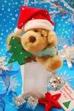 Süßes Weihnachtsgeschenk Lizenzfreies Stockfoto