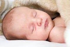 Süßes wenig Schätzchenschlafen stockbilder