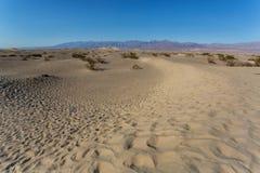 Süßhülsenbaum-flache Sanddünen in Death Valley stockbild