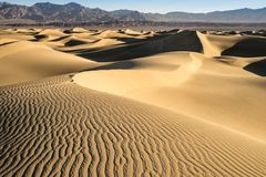 Süßhülsenbaum-Sanddünen, Death Valley, Kalifornien stockfotos