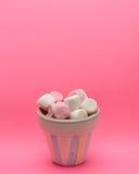Süßigkeit im kleinen Behälter Lizenzfreie Stockfotos