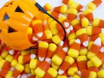 Süßigkeit-Mais Stockbilder