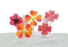 Süßigkeitblumen auf Candyfloss Lizenzfreie Stockbilder