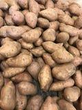 Süßkartoffel-Vertikalen-Hintergrund Stockfoto