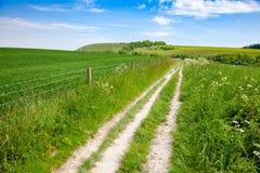 Süd- Abstieg-Weisen-nationale Spur in Sussex Süd-England Großbritannien stockbilder