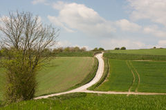 Süd- Abstiege nahe Worthing, West-Susex, England lizenzfreie stockbilder