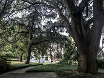 Süd-Carolina Statehouse Grounds in Kolumbien, South Carolina Lizenzfreies Stockfoto