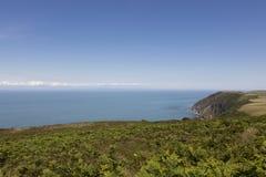 Süd-Devon-Küste von England Stockfotos