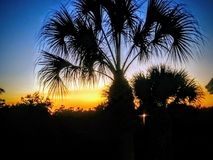 Süd-Florida-Sonnenuntergang lizenzfreie stockbilder