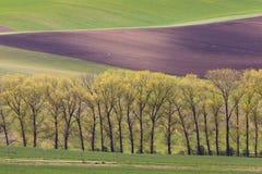 Süd-Moravian-Felder, Felder der Tschechischen Republik, moravian Hügel Lizenzfreie Stockbilder
