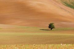 Süd-Moravian-Felder, Felder der Tschechischen Republik, moravian Hügel Stockfoto