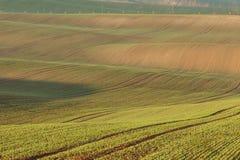 Süd-Moravian-Felder, Felder der Tschechischen Republik, moravian Hügel Lizenzfreie Stockfotos