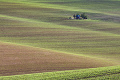 Süd-Moravian-Felder, Felder der Tschechischen Republik, moravian Hügel Stockbild