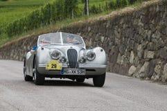 Süd-Tirol klassisches cars_2014_Jaguar XK 120 Roadster_2 lizenzfreie stockfotos