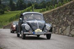 Süd-Tirol klassisches cars_2014_VW Kaefer_1 lizenzfreie stockfotografie