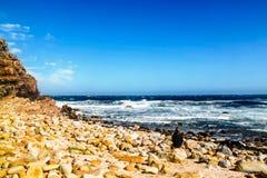 Südafrika - 2011: ein Mädchen sitzt und bewundert Wellen beim Kap der Guten Hoffnung lizenzfreie stockfotografie