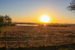 Südafrikanische Buschlandschaft bei Sonnenuntergang Lizenzfreie Stockfotografie