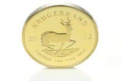Südafrikanische Goldgoldmünze Lizenzfreies Stockbild
