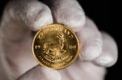 Südafrikanischer Goldmünze-Weiß-Handschuh Stockfotos