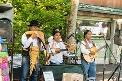 Südamerikanische Musikerausführung Lizenzfreies Stockbild