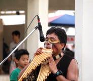 Südamerikanischer indischer Straßen-Musiker Stockfotos