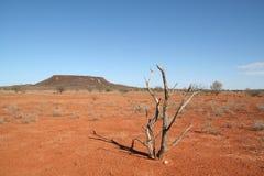 Südaustralien Stockbild