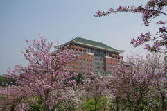 Südchina-landwirtschaftliche Universität lizenzfreies stockfoto