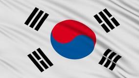 Südkoreanische Flagge. stock footage
