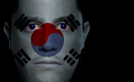 Südkoreanische Markierungsfahne - männliches Gesicht Stockbild