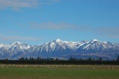 Südliche Alpen Stockbild