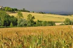 Südliche italienische Landschaft Landschaft Region von Basilikata Stockbild