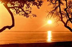 Südlicher Kultur-Park Adler der Sonnenuntergang im Oktober 1971 Lizenzfreies Stockfoto