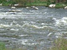 Südlicher Programmfehler-Fluss Weg auf dem Vorstadtwald Stockfotografie